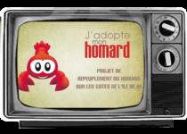 adopte-mon-homard-ile-de-re